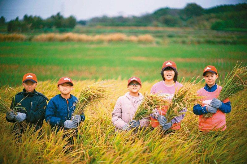 桃園市社子國小四周被稻田環繞,校方結合生態與客家特色,學生可親身體驗農事和種稻,變身具特色的生態教育學校。圖/社子國小提供