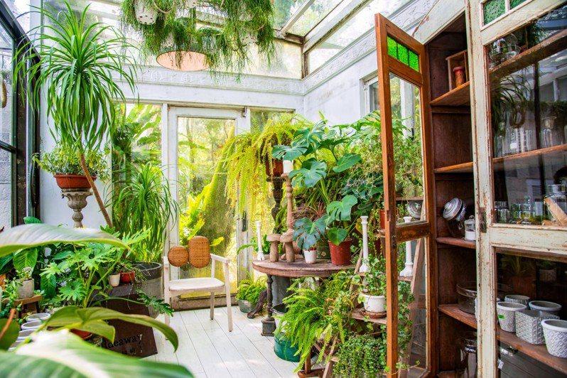溫室房的植栽豐沛,也是熱門美拍點。