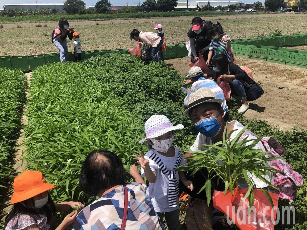饗樂纖農生技舉辦廢棄物體驗活動,推廣環境永續行銷小農產品。記者周宗禎/攝影