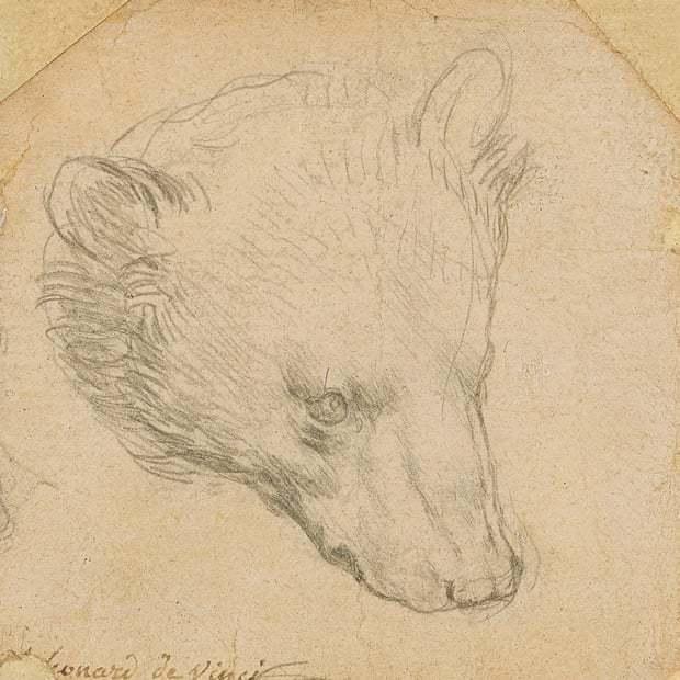 達文西一幅描繪熊的素描將於7月拍賣,可望以1200萬英鎊(約台幣4.6億元)高價...