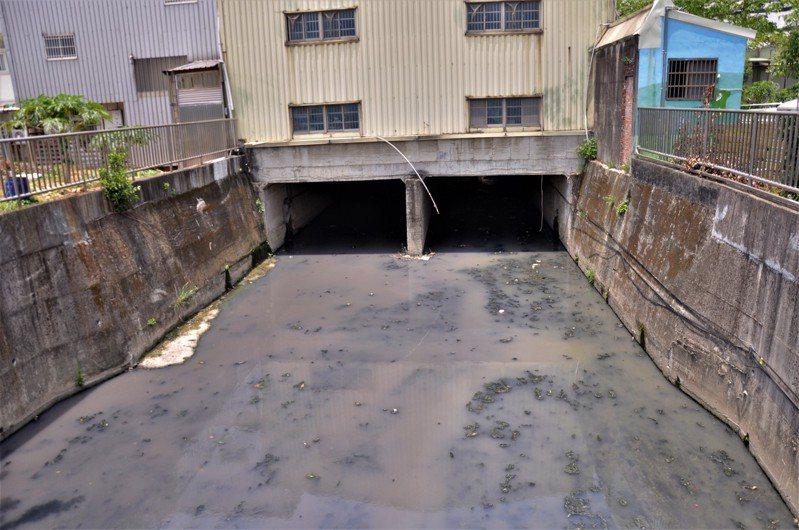 在鳳福活動中心後方的東門溪,廢水跟水裡藻類混合成白狀有機物,有礙觀感且惡臭頻傳。記者張哲郢/攝影