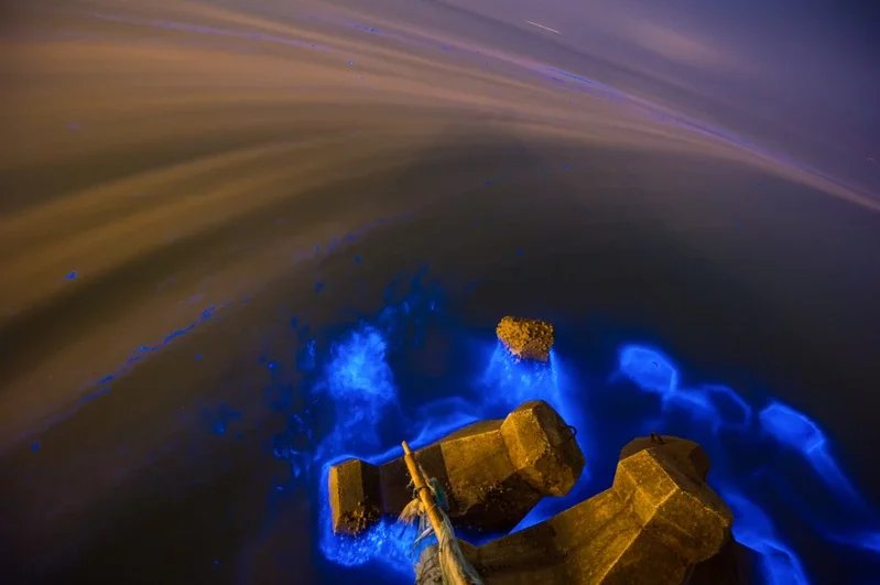藍眼淚的奇幻之美,吸引各路攝影好手前往拍照。  圖/連江縣政府提供