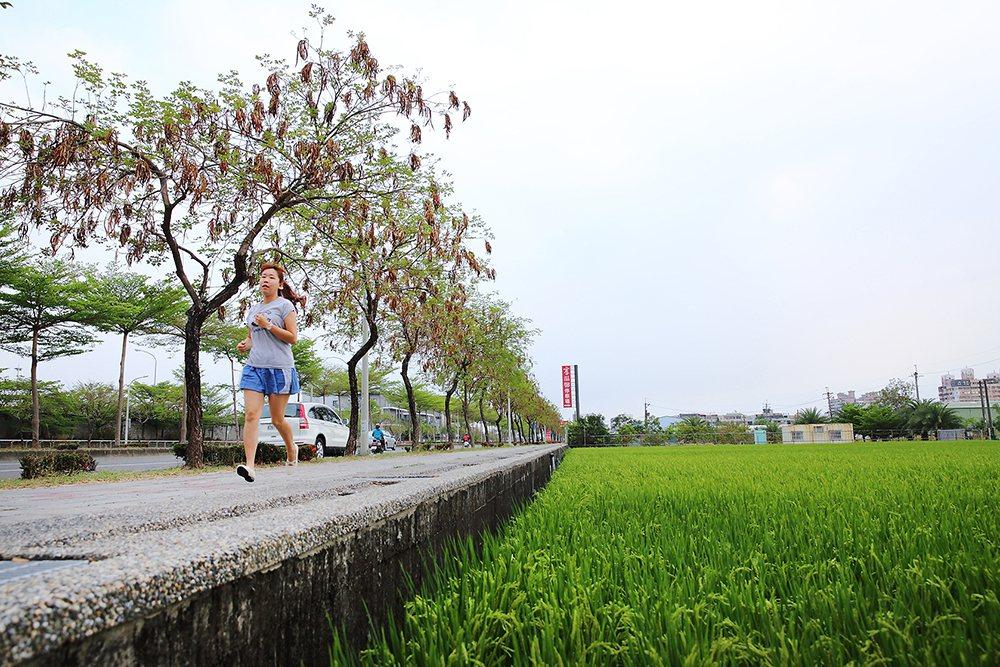 沿著捷西路、鳳東五街、環河街、萬丹路折返捷運站的大寮捷運站稻香大道慢跑路線,5公...