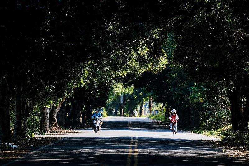Google地圖上找不到,外地客罕知的建國眷村聯外林道,兩旁濃密的樹蔭如同大傘一樣擋住炙熱烈陽,為騎乘帶來一絲清涼。