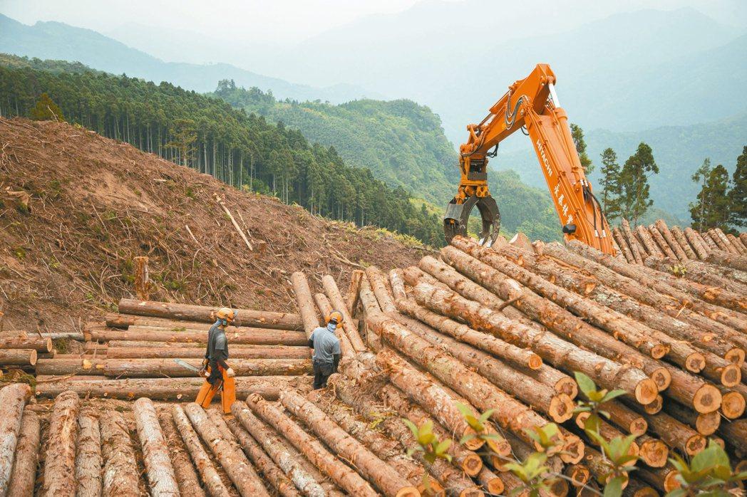 台灣每年使用四百多萬立方公尺木材,將近百分之九十九都是進口,自給率僅百分之一點零...
