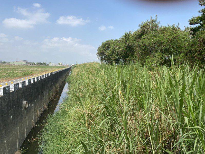 台南後壁菁寮排水右岸應急工程,目前施工中,預計明年1月完工。。圖 /台南市政府水利局提供