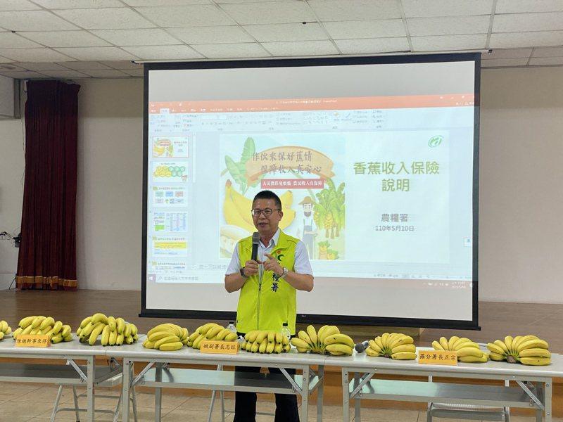 農糧署副署長姚志旺說,收入保險鎖定全台最大種植面積的果品香蕉,約1萬6000公頃,原本受理時間到3月31日截止,延長到5月14日。今在屏東里港鄉辦理香蕉收入保險說明會,呼籲種植香蕉的農民把握最後時間,到種植所在地農會辦理。記者劉星君/攝影