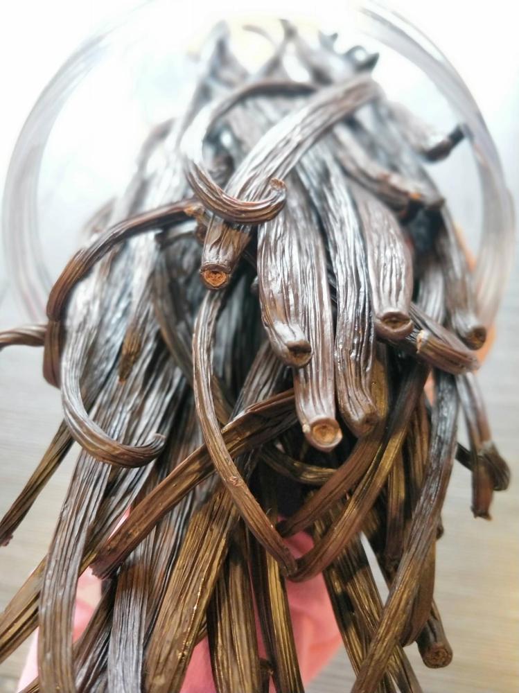發酵期長達半年以上的香草莢,此次亦在現場販售。圖/好時好物提供。