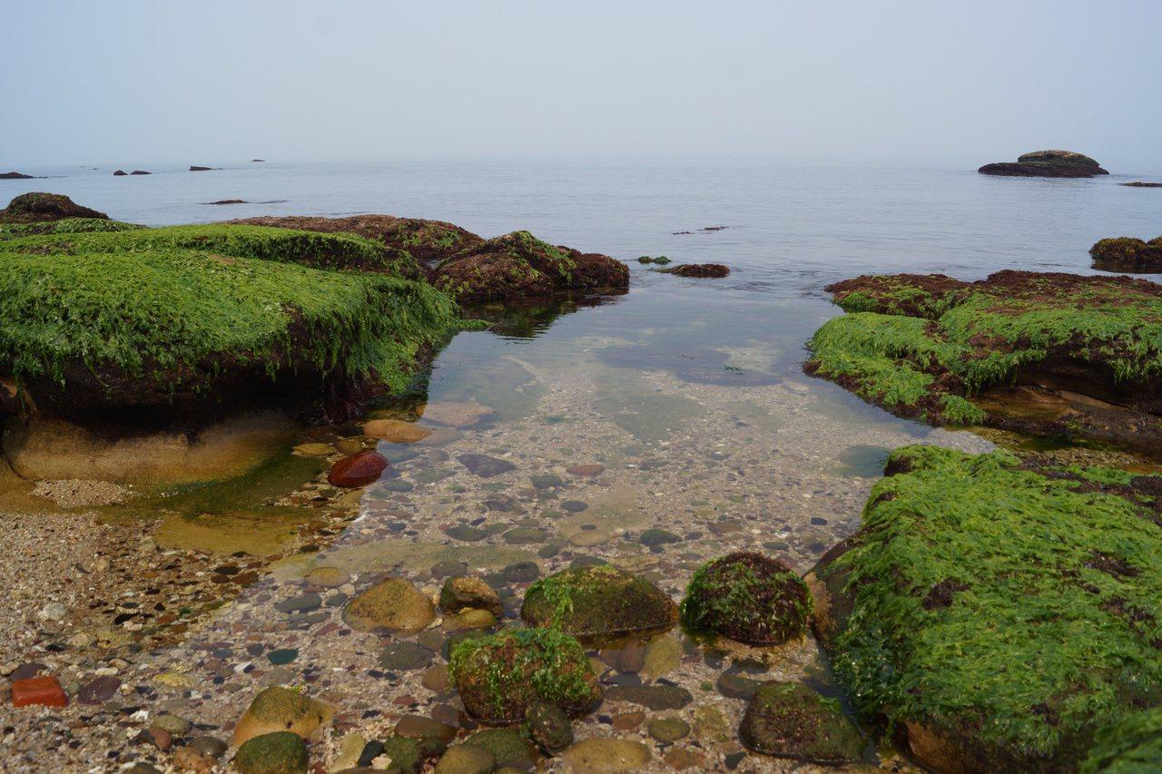 水尾漁港旁的神秘海灘,逢假日聚集不少觀光客。 圖/曾健祐 攝影