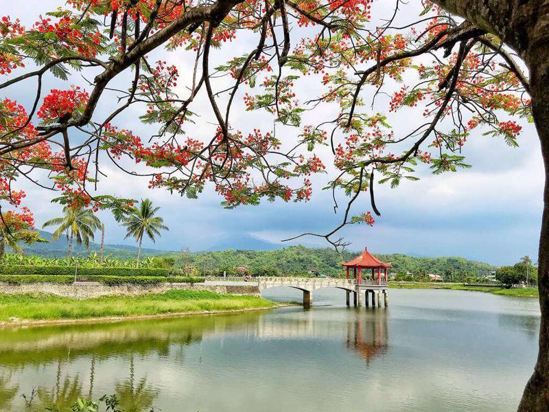 湖光景色別緻的美濃湖是十分愜意的景點(圖來源/高雄旅遊網)