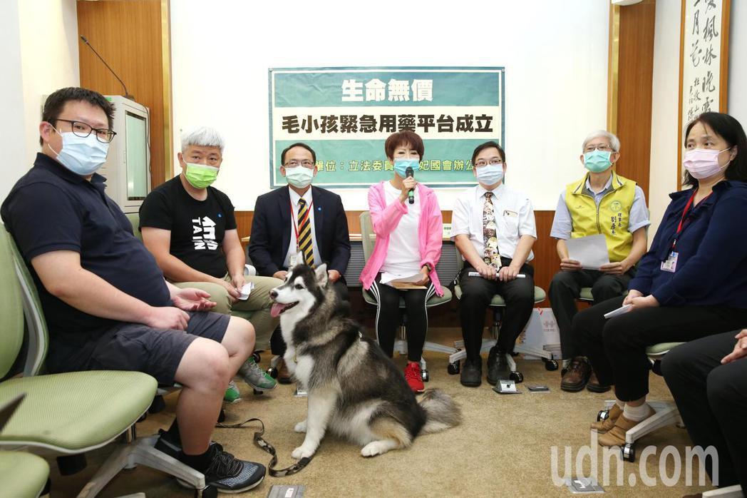立委陳亭妃(中)上午舉行「毛小孩緊急用藥平台成立」記者會。記者邱德祥/攝影