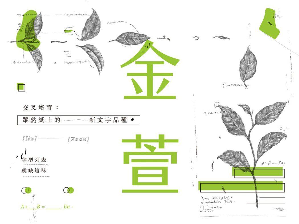 「金萱字體」是貝殼放大的代表性募資案之一。圖/林大涵提供