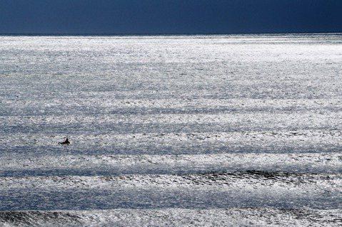 波裡的浪人。 圖/大Q攝影