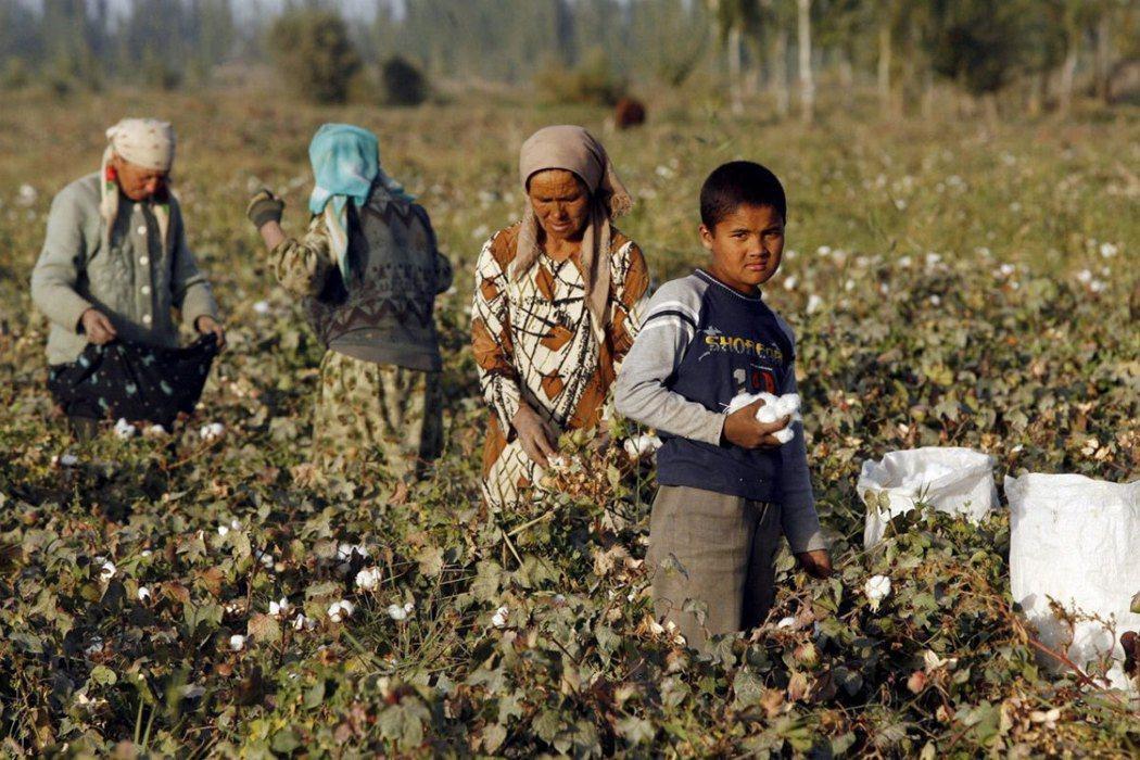 美國國務院官員說,中國大陸政府傾力將整個新疆地區打造為「露天監獄」。圖為新疆維吾...