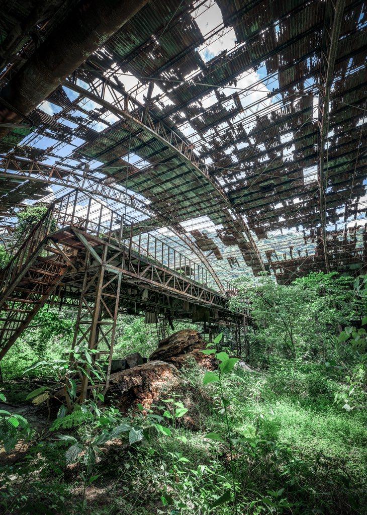 日本攝影師分享過去在台灣廢墟,拍到有如科幻世界般的奇景。圖擷取自twitter