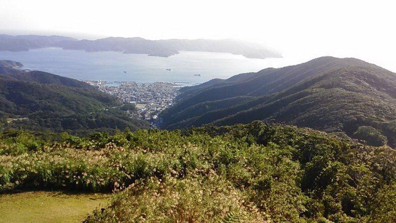 日本奄美大島被自然環繞,有許多特有種棲息。當地為了保護特有種,只好撲殺外來的野貓。圖擷取自鹿兒島官方網站