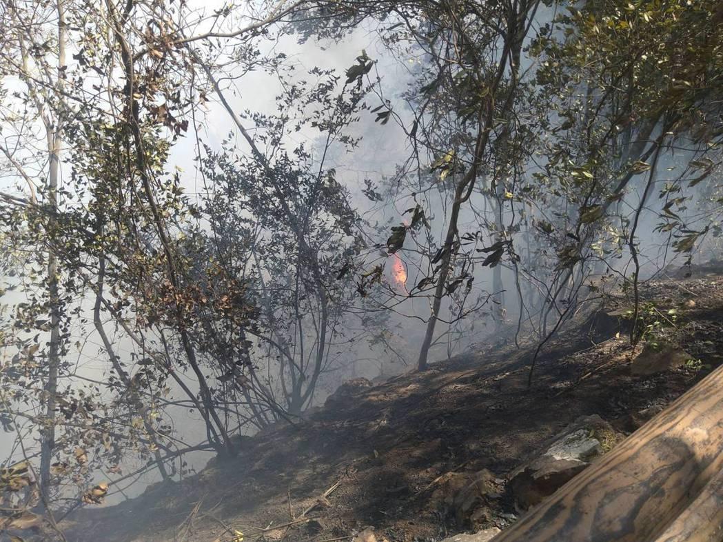 興大惠蓀林場昨天發生森林火警,上午經調派空勤直升機進行空中多次灌救後,校方表示目...