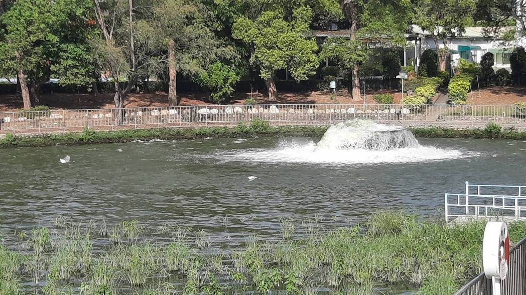 高雄澄清湖水庫目前蓄水量達93.16%(245萬噸),預計可穩定供水至6月中。記...