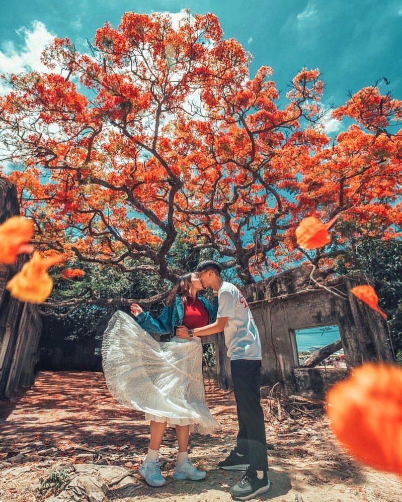 ▲六月份旅遊活動推薦-鳳凰花花季。 (圖/hannababy_,Instagram)