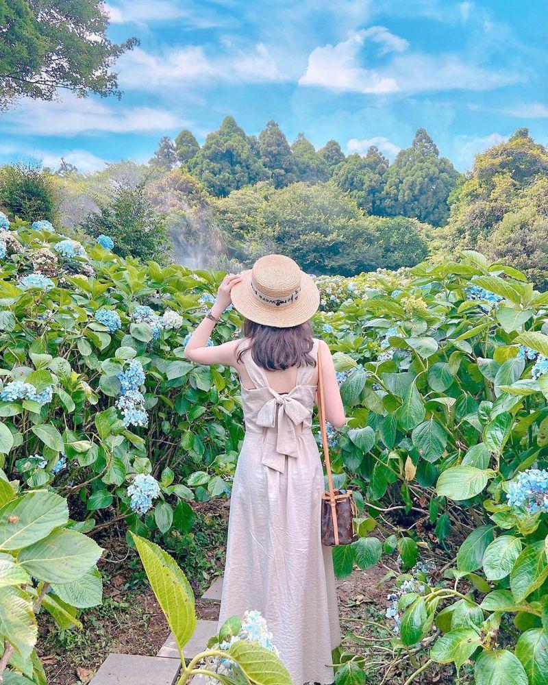 ▲六月份旅遊活動推薦-繡球花。 (圖/baibai.ya,Instagram)