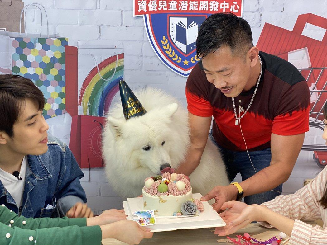 江俊翰在鳳凰直播「大手牽小手」幫狗女兒愛美麗慶生。圖/民視提供