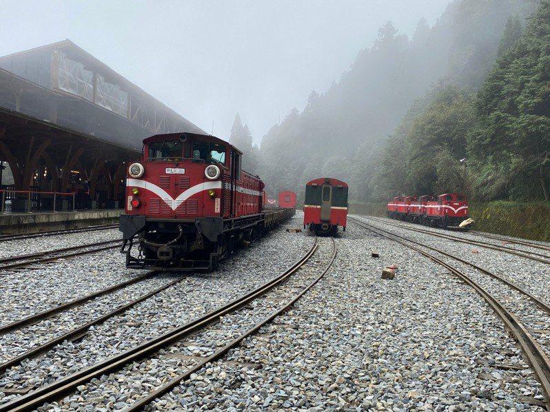 嘉義林管處宣布森林鐵路明天起暫停營運,業者表示對觀光衝擊甚鉅。圖/嘉義林管處提供