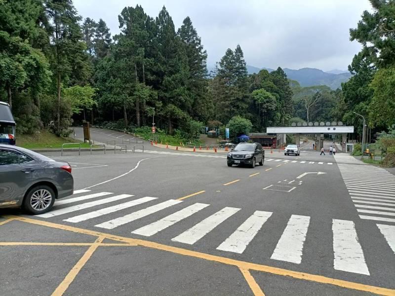 台大溪頭自然教育園區停車場從早到晚空蕩蕩,園方表示今天面臨遊客數跳崖式下跌。記者黑中亮/攝影