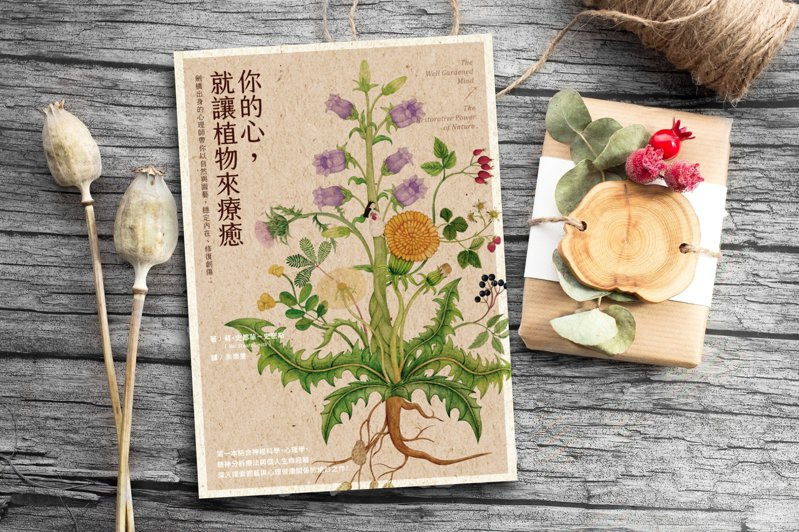 書名:《你的心,就讓植物來療癒》 作者:蘇.史都華-史密斯(Sue Stuart-Smith) 譯者:朱崇旻 出版社:究竟出版/圓神出版 出版時間:2021年04月01日