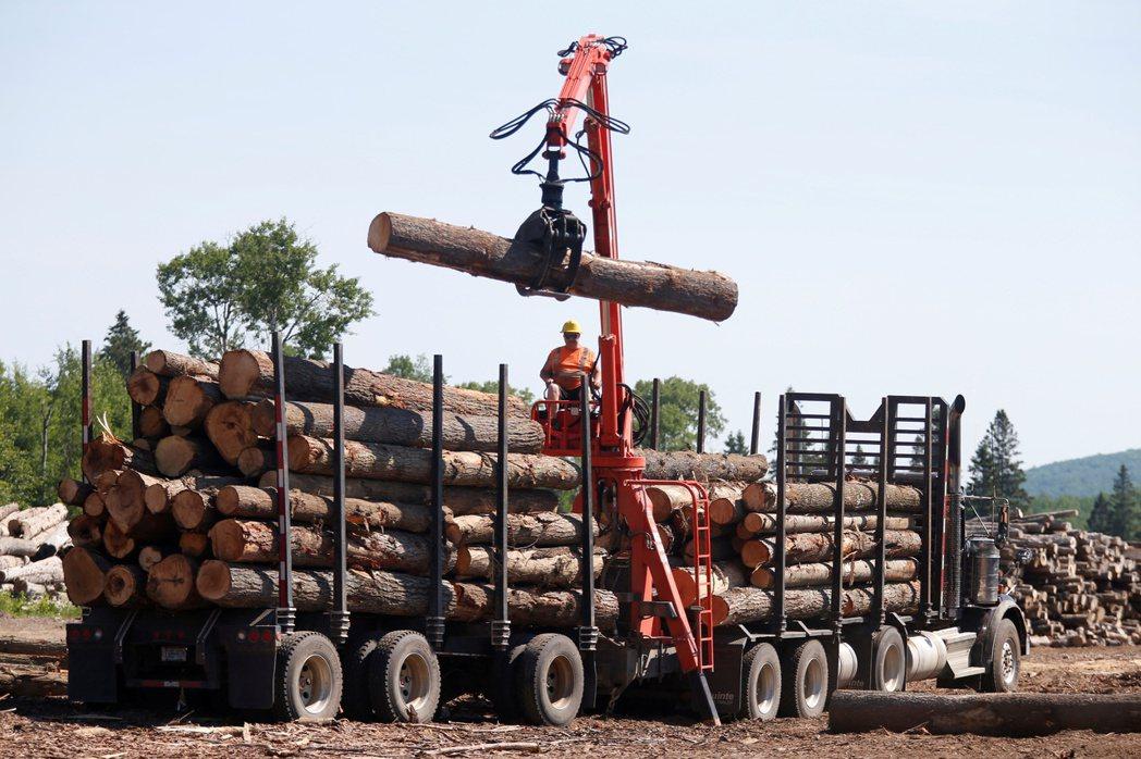 美國木材期貨價回檔,較5月10日高點大跌27%,預示史上最長漲勢可能告終。路透