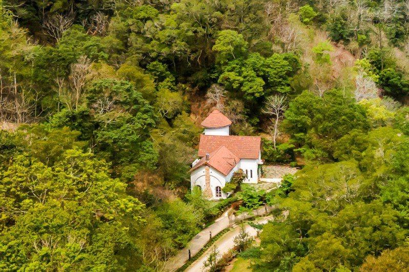 山那邊.綠葉方舟像是航行在樹海裡的幸福森林家園。