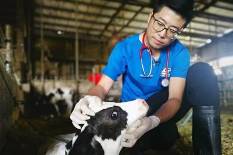 獸醫龔建嘉推動「白色革命」,讓消費者喝到安全牛奶。圖/鮮乳坊提供