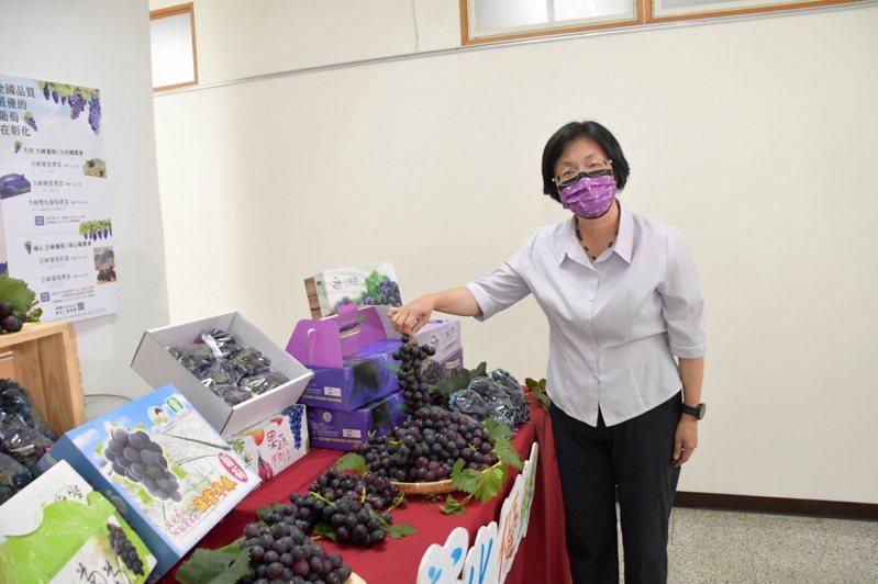 彰化葡萄近期受情影響被標籤化,彰化縣長王惠美極力促銷。圖/彰化縣府提供