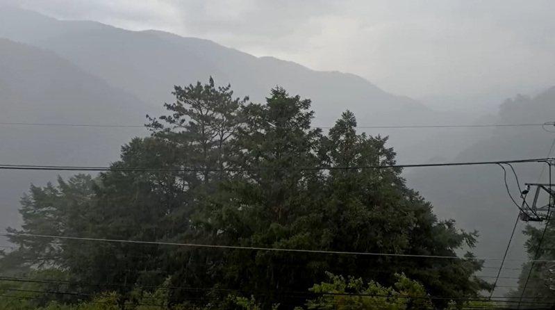 台中梨山地區今天下午3點多下雨了,山上居民歡呼表示,「期待已久的天降甘霖!」圖/民眾提供