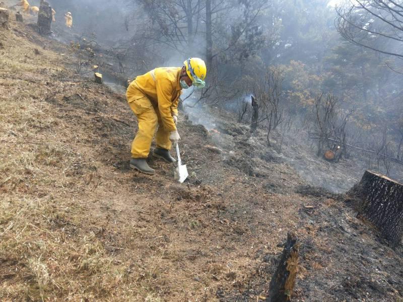森林護管員拉出防火線。圖/嘉義林管處提供