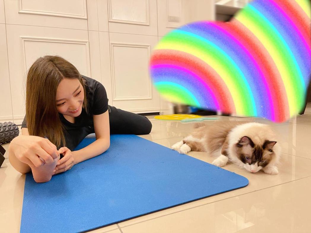 閻奕格在家運動,愛貓也愛湊一咖。圖/華研國際提供
