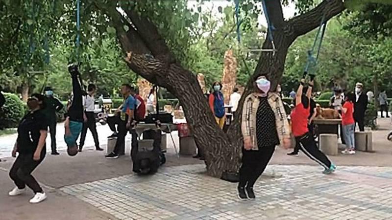 瀋陽大爺大媽「吊脖健身」掛滿樹。微博圖片