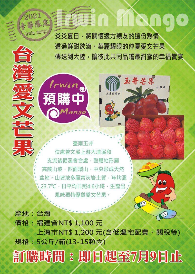 玉井區農會今年提供「台灣下單、大陸取貨」芒果訂購服務,取貨地點分別為大陸福建省及上海市。圖 /台南市政府農業局提供