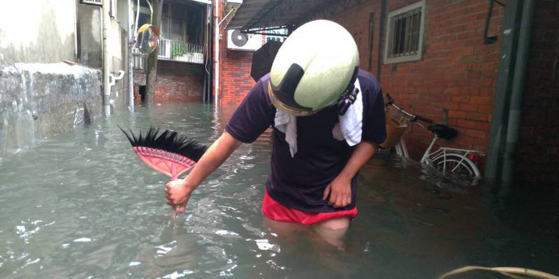 北市內湖區東湖路58巷今因強降雨積淹水。圖/台北市政府水利處提供