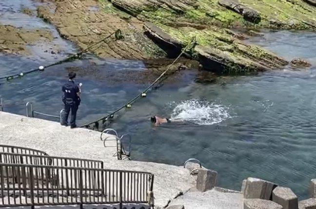 無視防疫禁令2泳客硬闖海興泳池,基警取締未戴口罩。記者游明煌/翻攝