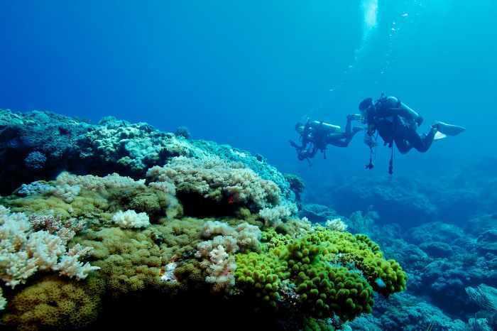 綠島潛水。 圖/shutterstock