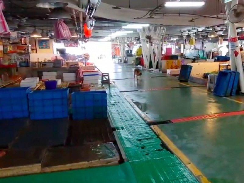 石門區的富基漁港漁市只剩下不到十攤苦撐,要顧防疫也兼顧生計。 圖/紅樹林有線電視提供