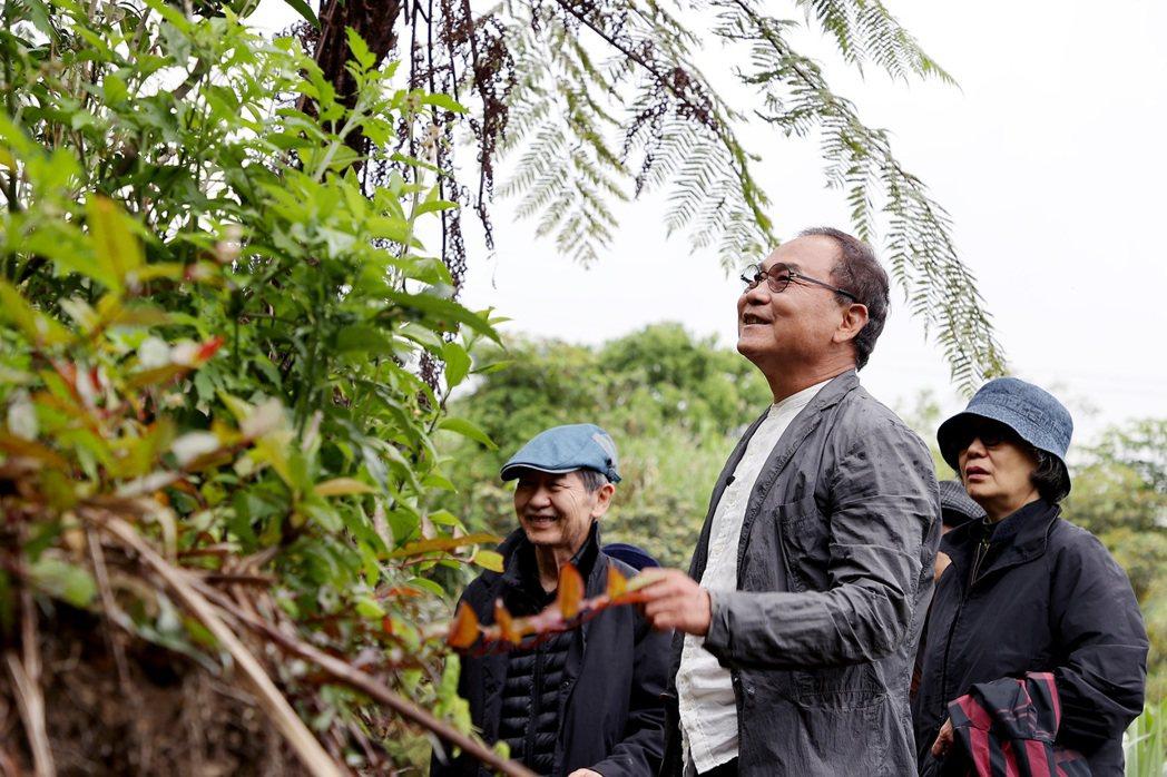 林憲能期待能透過自己,讓更多人了解原生態茶種的美好。攝影/余承翰