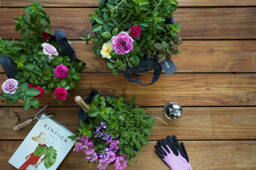 CNFlower的Root Pouch植物袋,能成為桌上的小花園。圖/CNFlo...