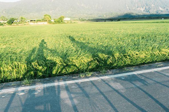 一家人在花蓮,享受生活的安定感。 圖/李維尼攝影