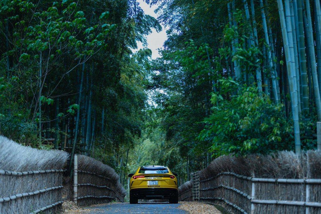 京都洛西竹林公園。 圖/Lamborghini提供
