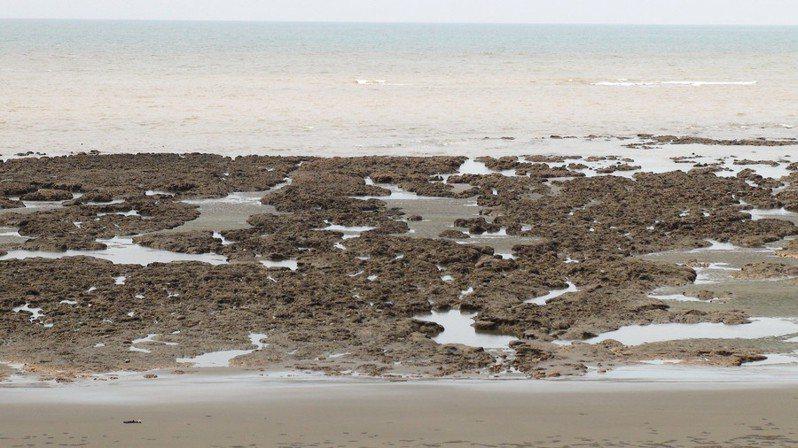 環團認為,三接建設在30年後將被閒置,藻礁白白受害。(Photo by 台灣水鳥研究群 彰化海岸保育行動聯盟 on flickr under CC2.0)