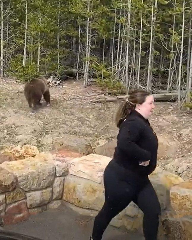 美國黃石國家公園10日發生一名女子違規靠近一頭母灰熊拍照,直到灰熊朝她衝去後才掉頭走離。影片在社群媒體流傳,引起公園巡警注意,於近日上社群媒體發布通告,籲請民眾提供線索。畫面翻攝:IG/yellowstonenps