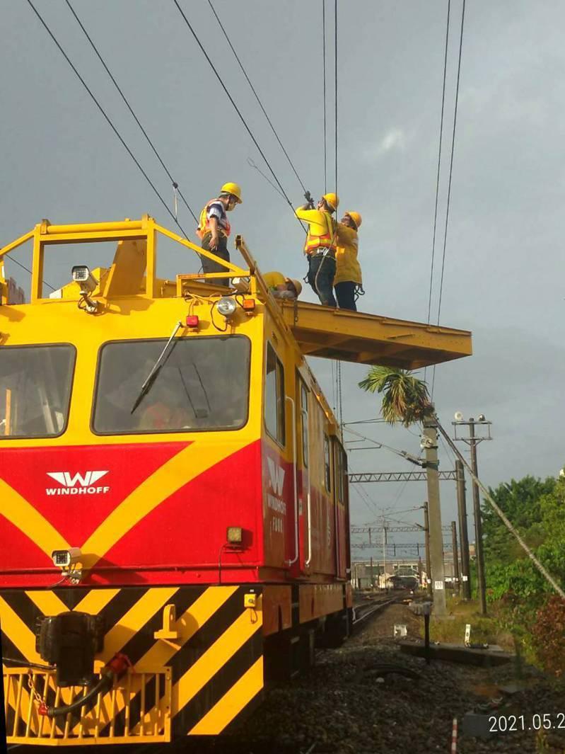 檳榔樹倒塌壓到電車線,台鐵搶救中。圖/台鐵提供