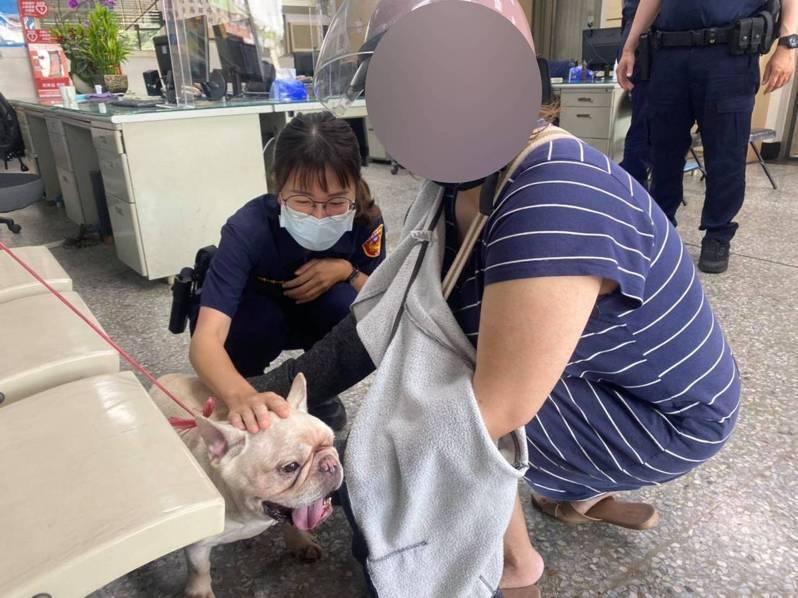 警方找到劉姓女飼主後,她開心的抱著愛犬。記者邱奕能/翻攝