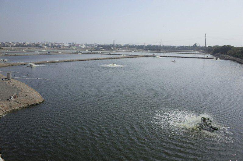 北高雄是台灣的養殖重鎮,水試所總所南遷後,可為南台灣漁業養殖技術注入活水。圖/立委邱志偉辦公室提供